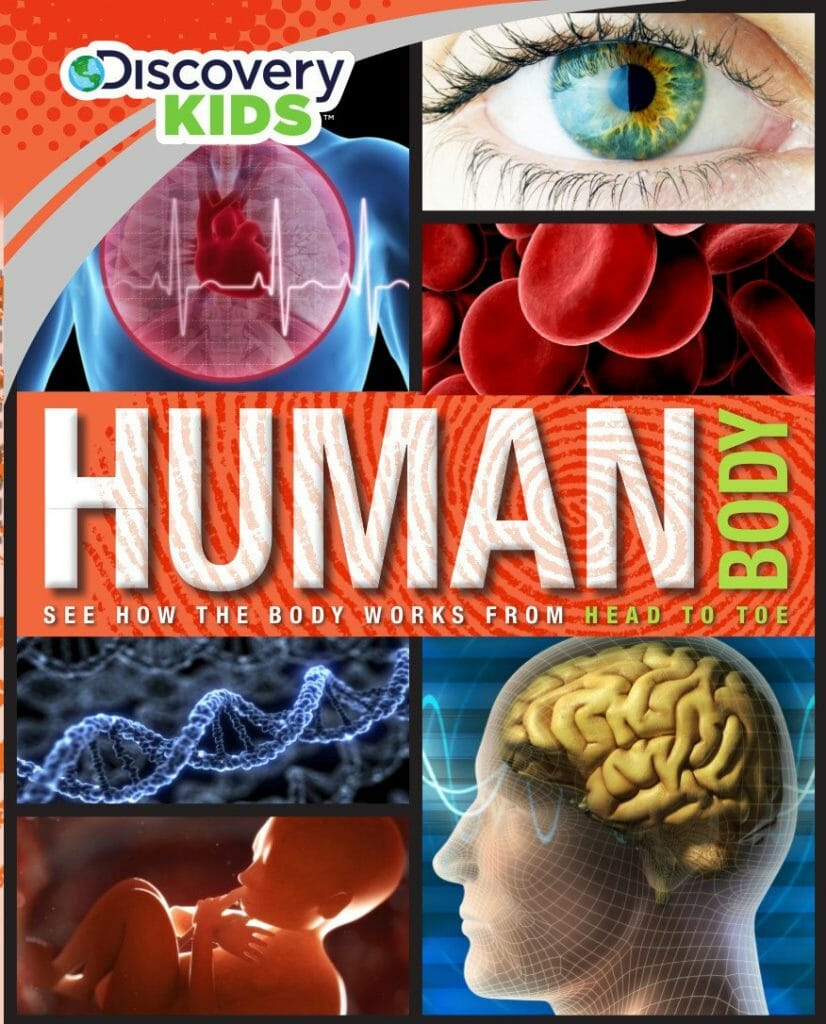 human-body-discovery-kids-stem-books-for-kids