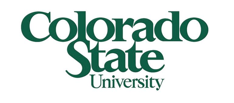 CSU Bachelor's in Data Science