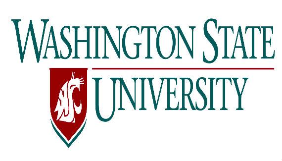 Washington State University Bachelor of Science in Data Analytics