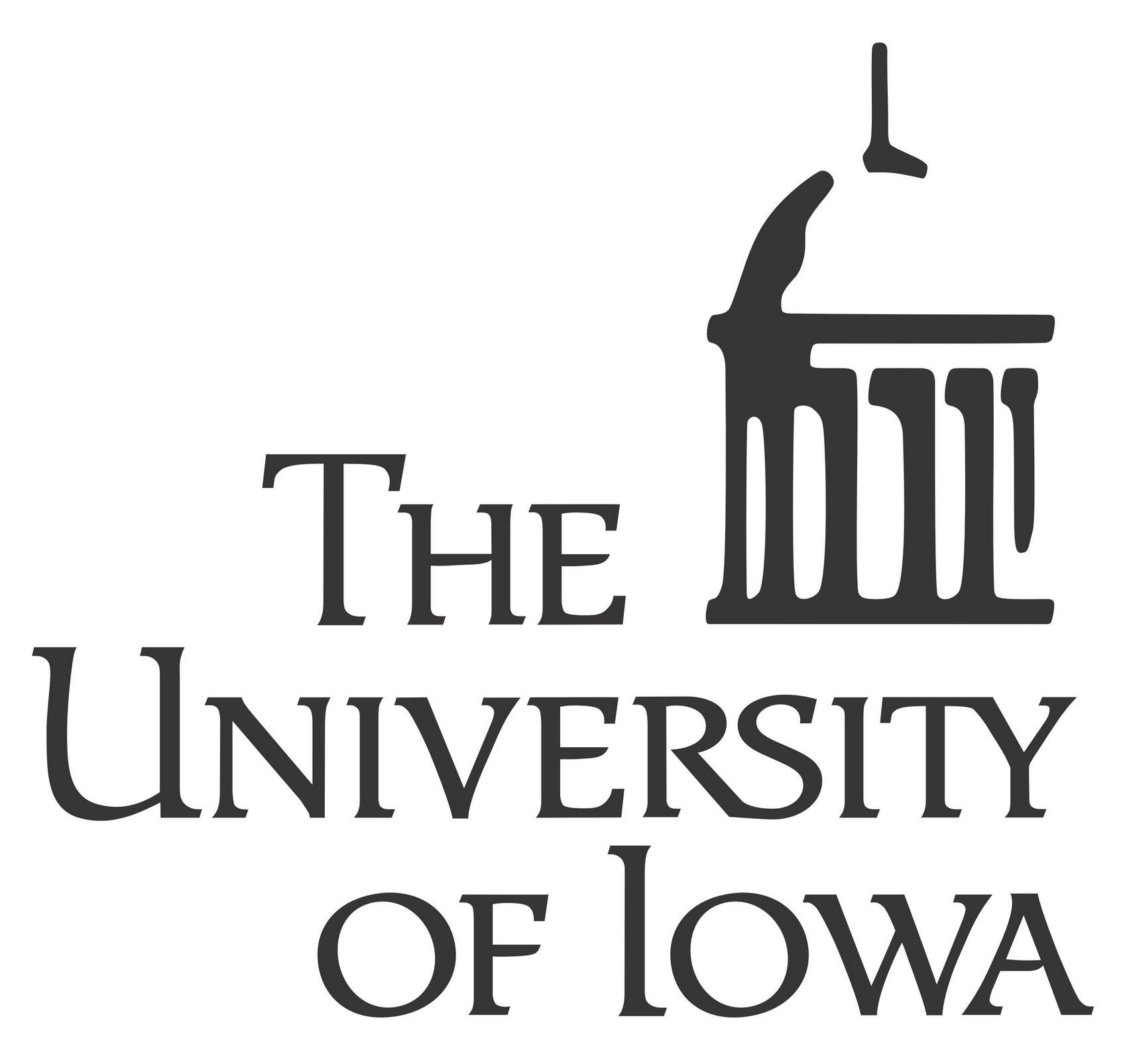 University of Iowa Bachelor's in Data Science