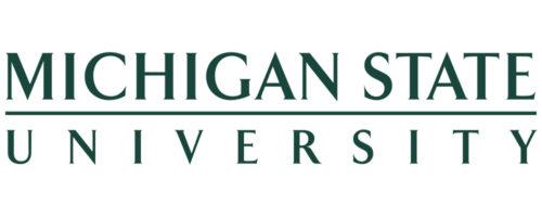 Michigan State Graduate Certificate in Computational Modeling