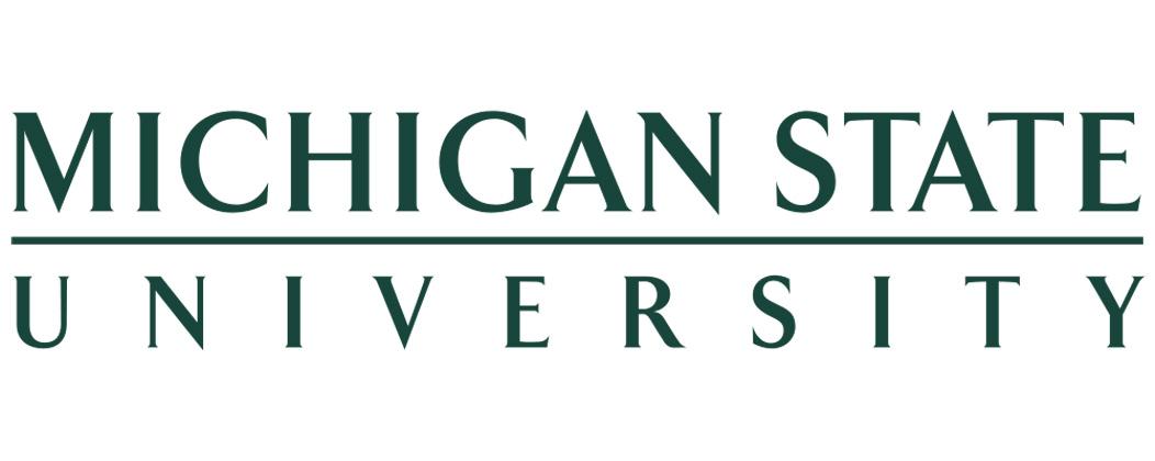 Michigan State MS in Marketing Research