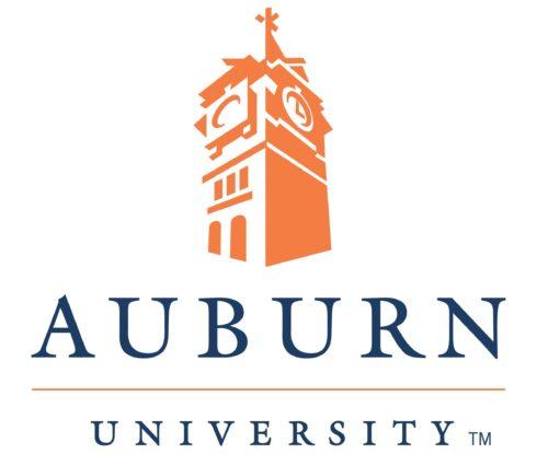 Auburn University Online Bachelor of Computer Science (BCS)