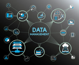 Gain Proficiency in Data Management Technologies